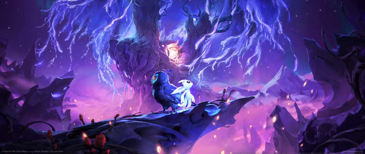 Ori and the Will of Wisps achtergrond