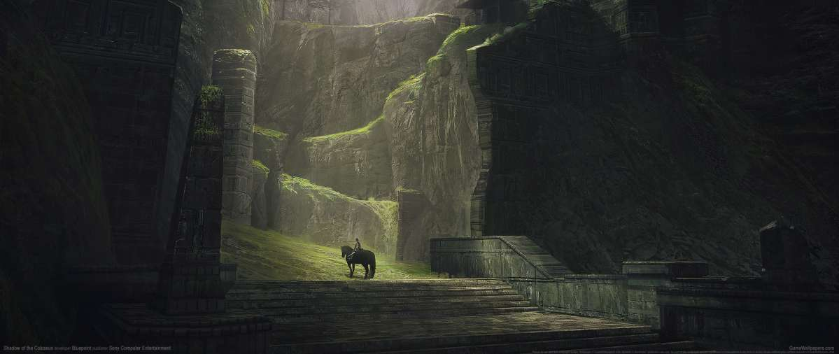 Shadow of the Colossus achtergrond