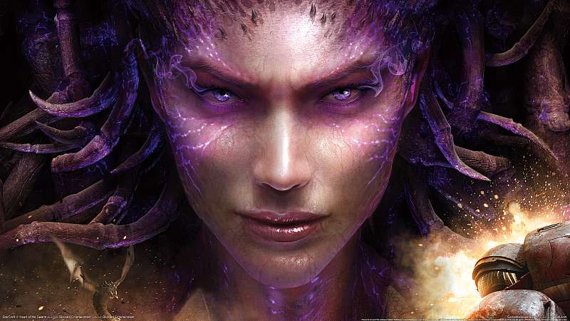 StarCraft 2: Heart of the Swarm achtergrond