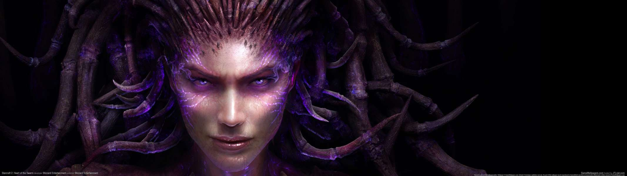 StarCraft 2: Heart of the Swarm dual screen achtergrond