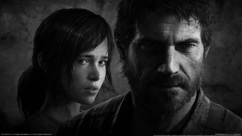 The Last of Us achtergrond 04