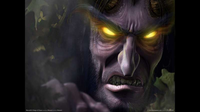 Warcraft 3: Reign of Chaos achtergrond 03